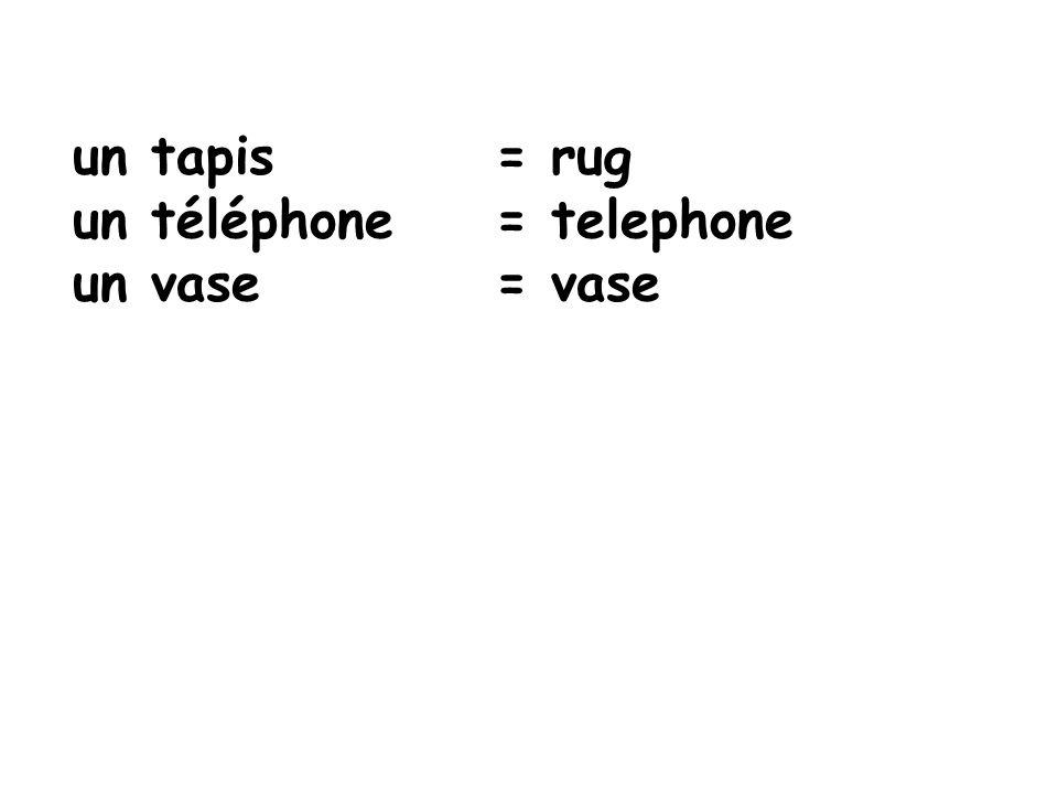 un tapis = rug un téléphone = telephone un vase = vase
