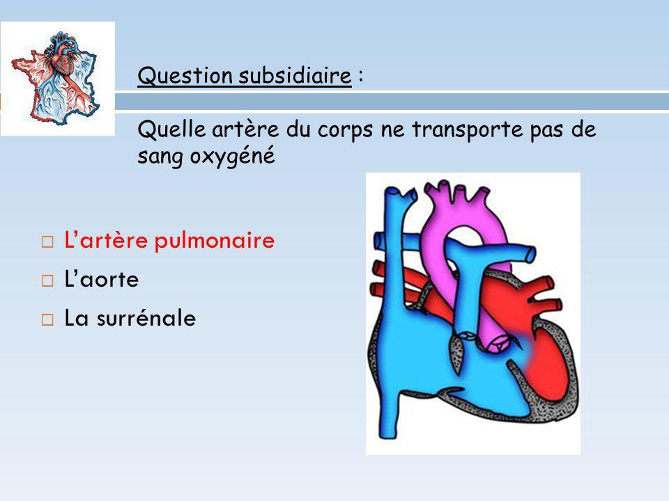 L'artère pulmonaire L'aorte La surrénale