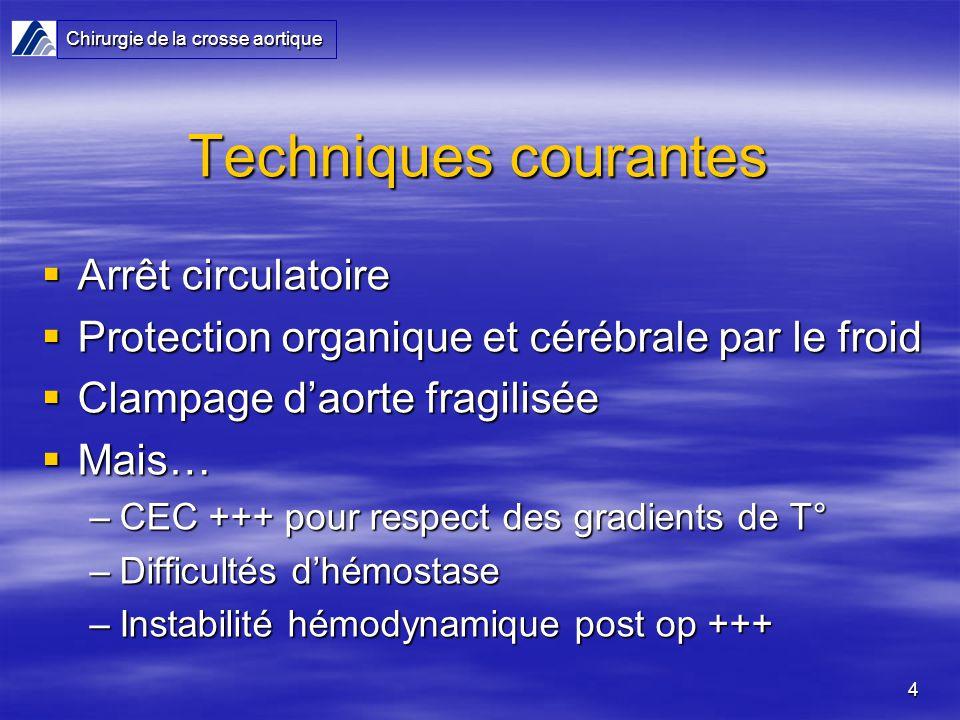 Techniques courantes Arrêt circulatoire