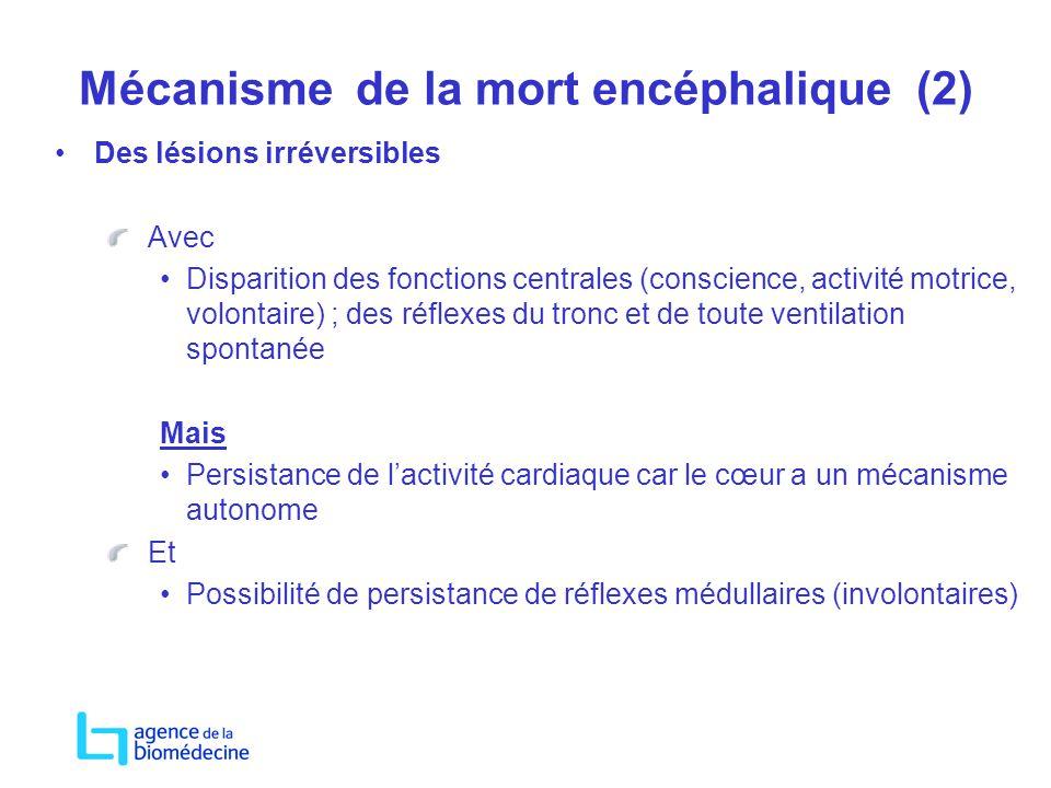 Mécanisme de la mort encéphalique (2)