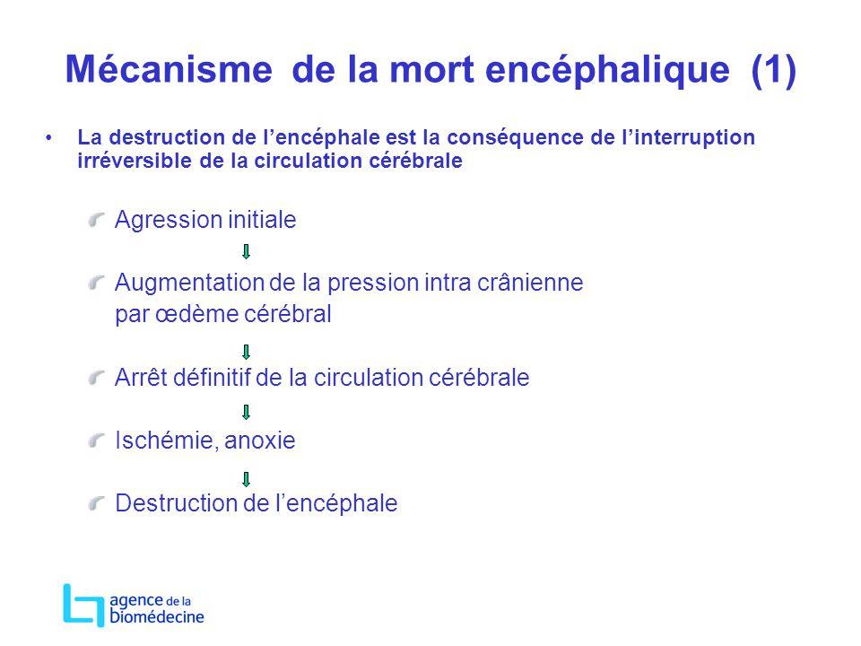Mécanisme de la mort encéphalique (1)