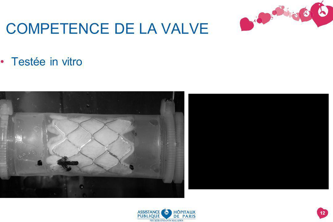 COMPETENCE DE LA VALVE Testée in vitro