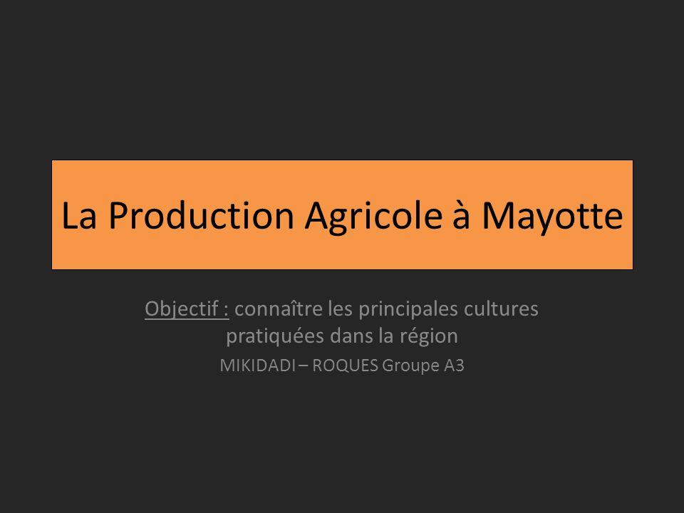 La Production Agricole à Mayotte