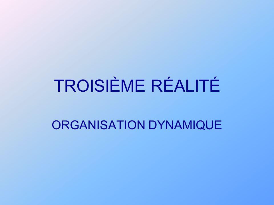 ORGANISATION DYNAMIQUE