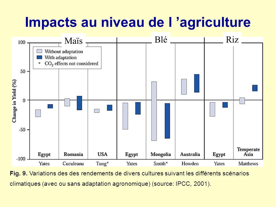 Impacts au niveau de l 'agriculture