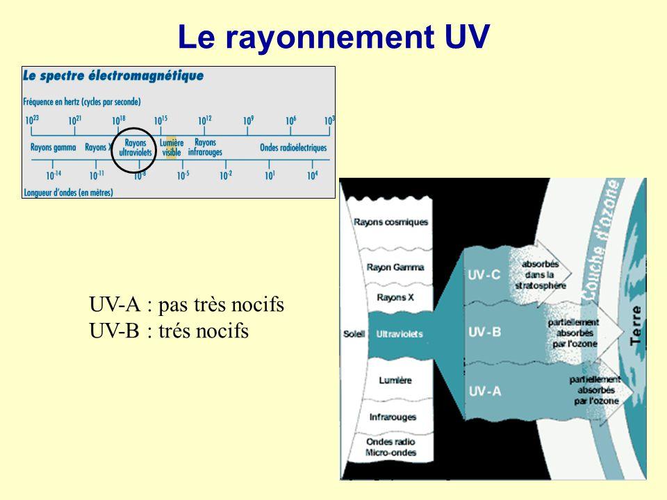 Le rayonnement UV UV-A : pas très nocifs UV-B : trés nocifs
