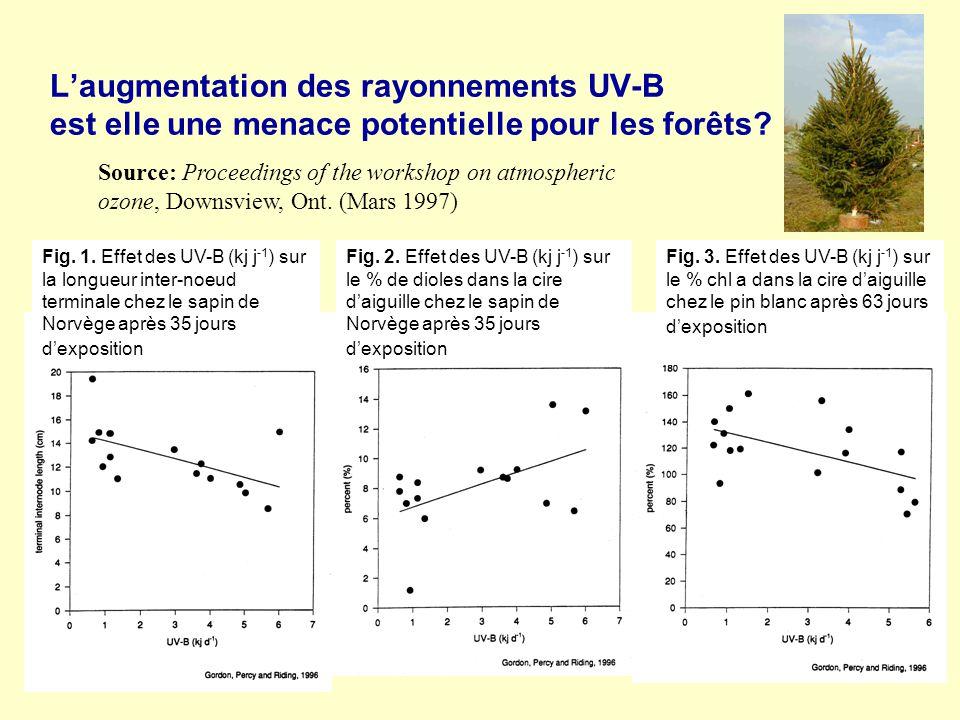 L'augmentation des rayonnements UV-B est elle une menace potentielle pour les forêts