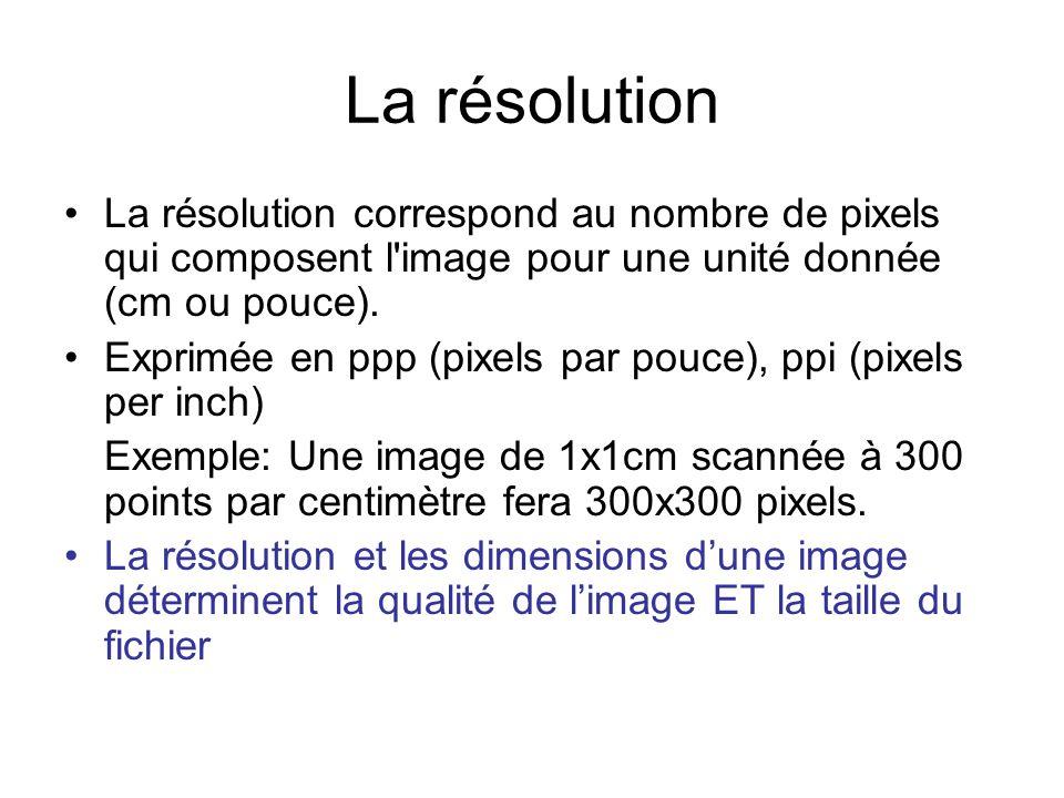 La résolution La résolution correspond au nombre de pixels qui composent l image pour une unité donnée (cm ou pouce).