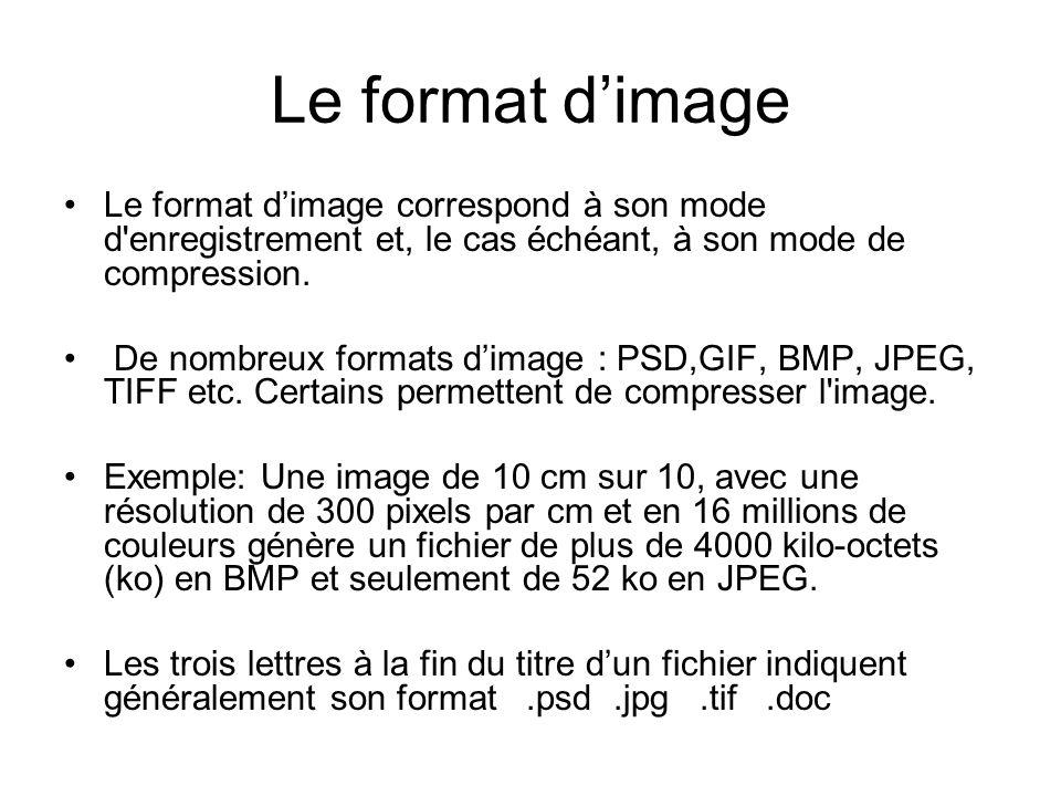 Le format d'image Le format d'image correspond à son mode d enregistrement et, le cas échéant, à son mode de compression.