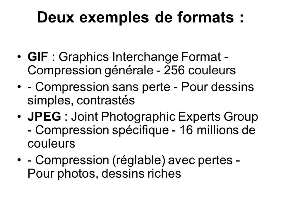 Deux exemples de formats :
