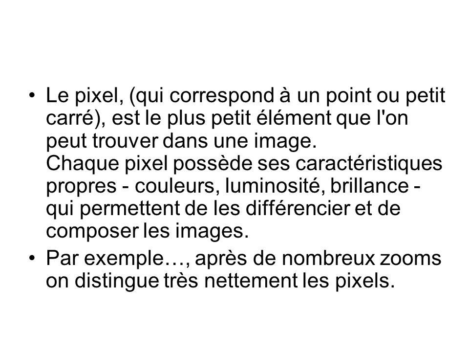 Le pixel, (qui correspond à un point ou petit carré), est le plus petit élément que l on peut trouver dans une image. Chaque pixel possède ses caractéristiques propres - couleurs, luminosité, brillance - qui permettent de les différencier et de composer les images.