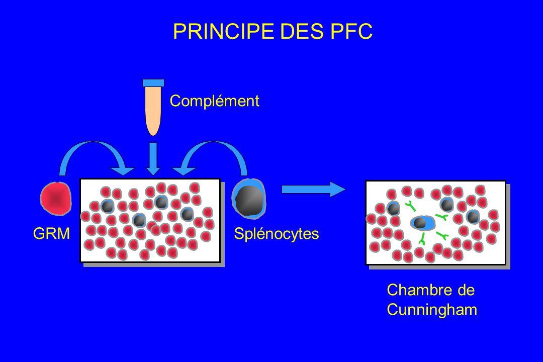 PRINCIPE DES PFC Complément GRM Splénocytes Chambre de Cunningham 8