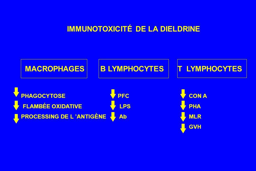 IMMUNOTOXICITÉ DE LA DIELDRINE