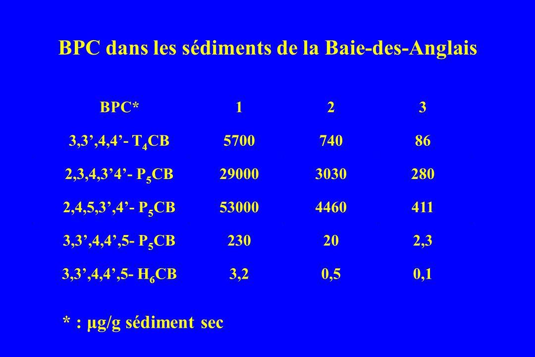 BPC dans les sédiments de la Baie-des-Anglais