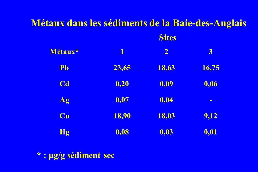 Métaux dans les sédiments de la Baie-des-Anglais
