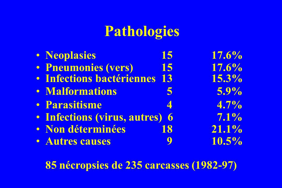 Pathologies Neoplasies 15 17.6% Pneumonies (vers) 15 17.6%