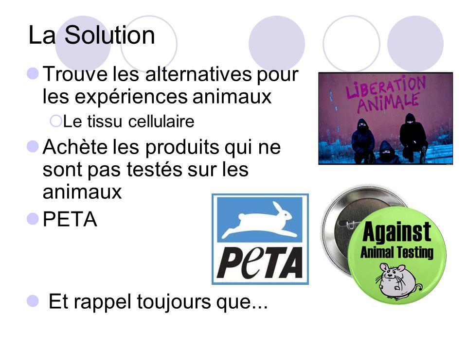 La Solution Trouve les alternatives pour les expériences animaux
