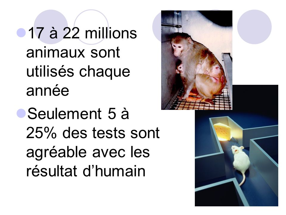 17 à 22 millions animaux sont utilisés chaque année