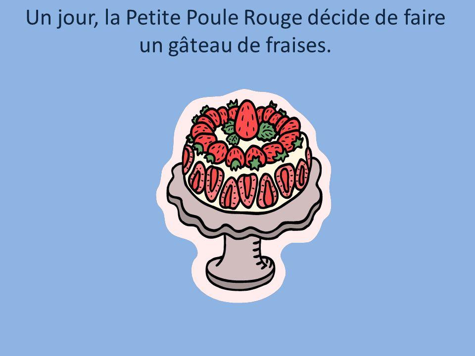 Un jour, la Petite Poule Rouge décide de faire un gâteau de fraises.