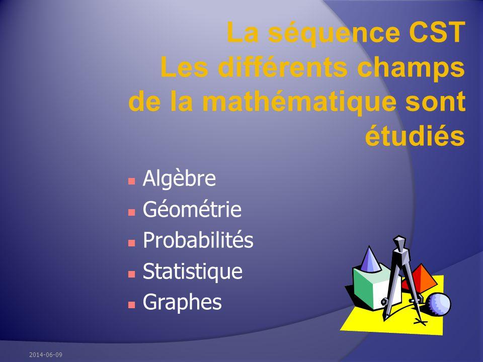 La séquence CST Les différents champs de la mathématique sont étudiés