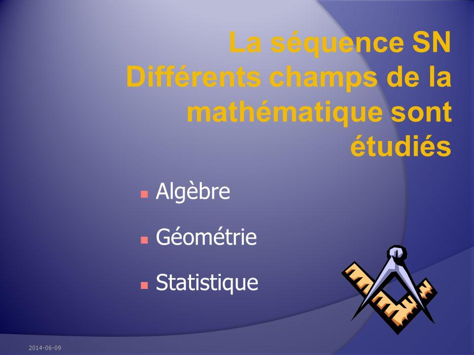 La séquence SN Différents champs de la mathématique sont étudiés