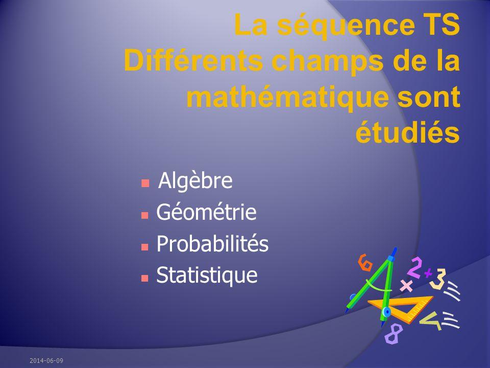 La séquence TS Différents champs de la mathématique sont étudiés