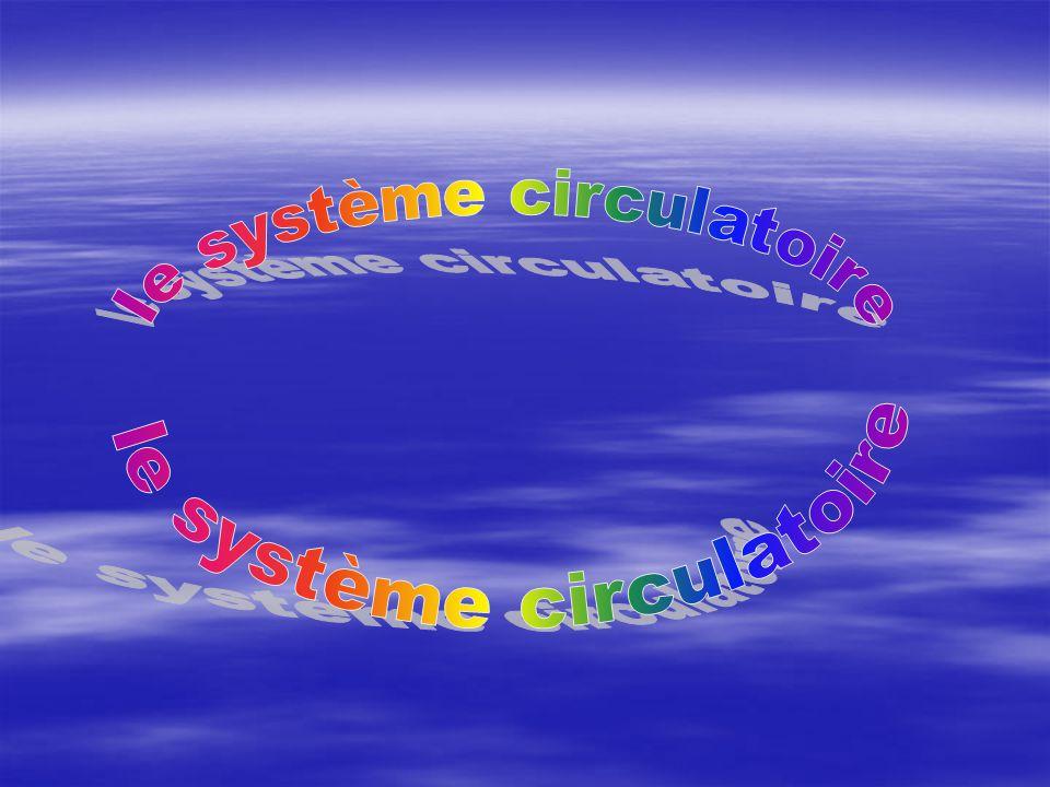 le système circulatoire le système circulatoire