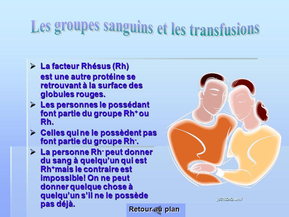 Les groupes sanguins et les transfusions