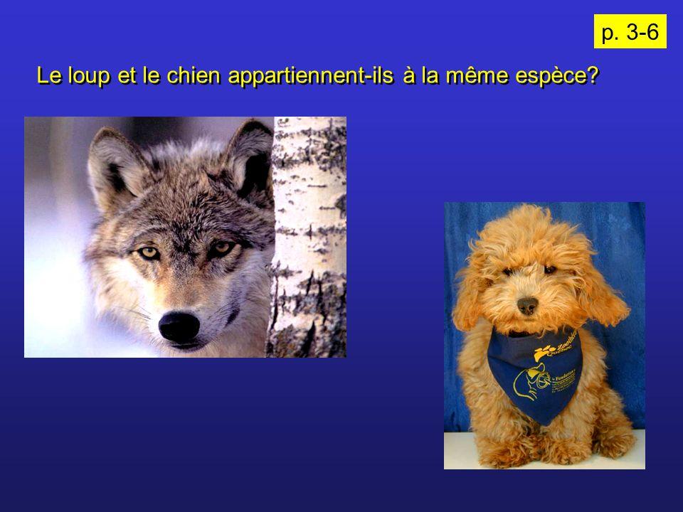 p. 3-6 Le loup et le chien appartiennent-ils à la même espèce