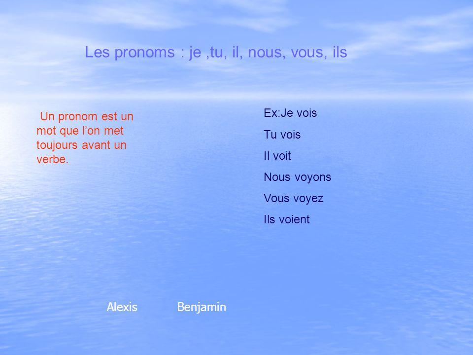 Les pronoms : je ,tu, il, nous, vous, ils
