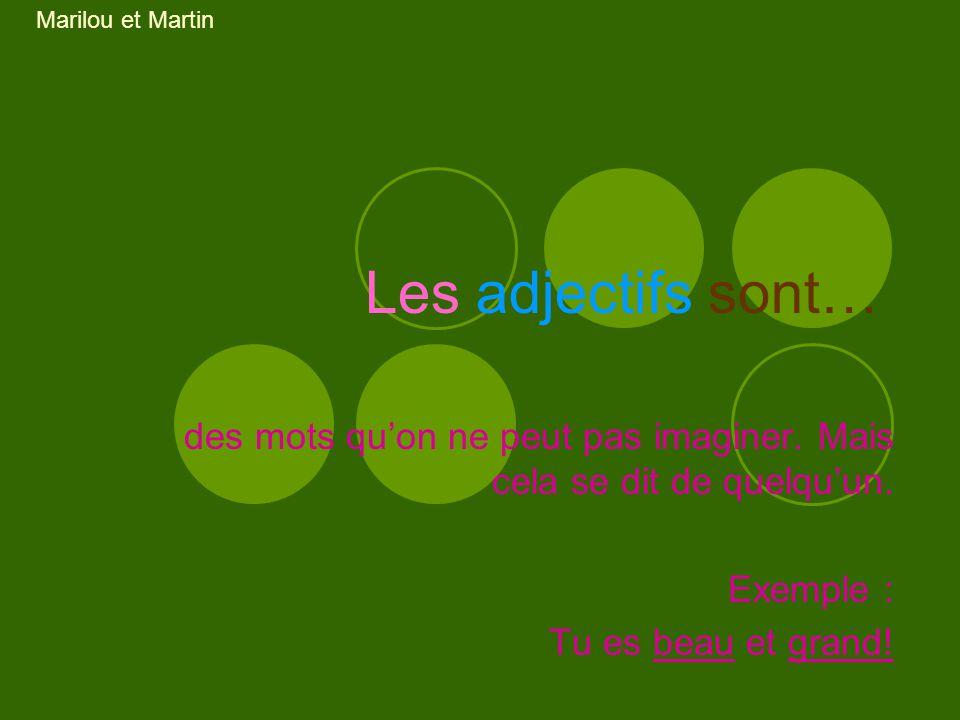 Marilou et Martin Les adjectifs sont… des mots qu'on ne peut pas imaginer. Mais cela se dit de quelqu'un.