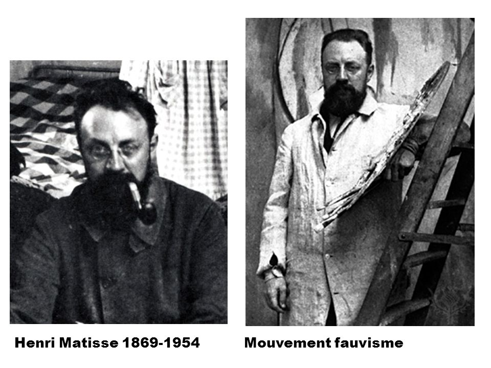 Henri Matisse 1869-1954 Mouvement fauvisme