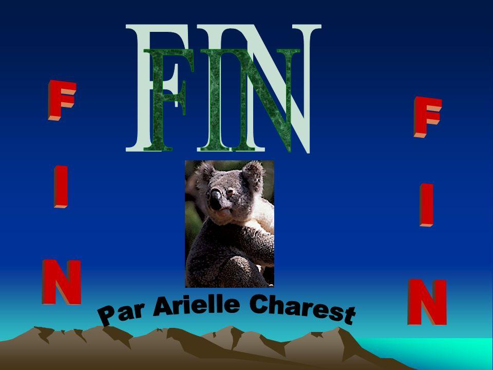 FIN FIN FIN Par Arielle Charest