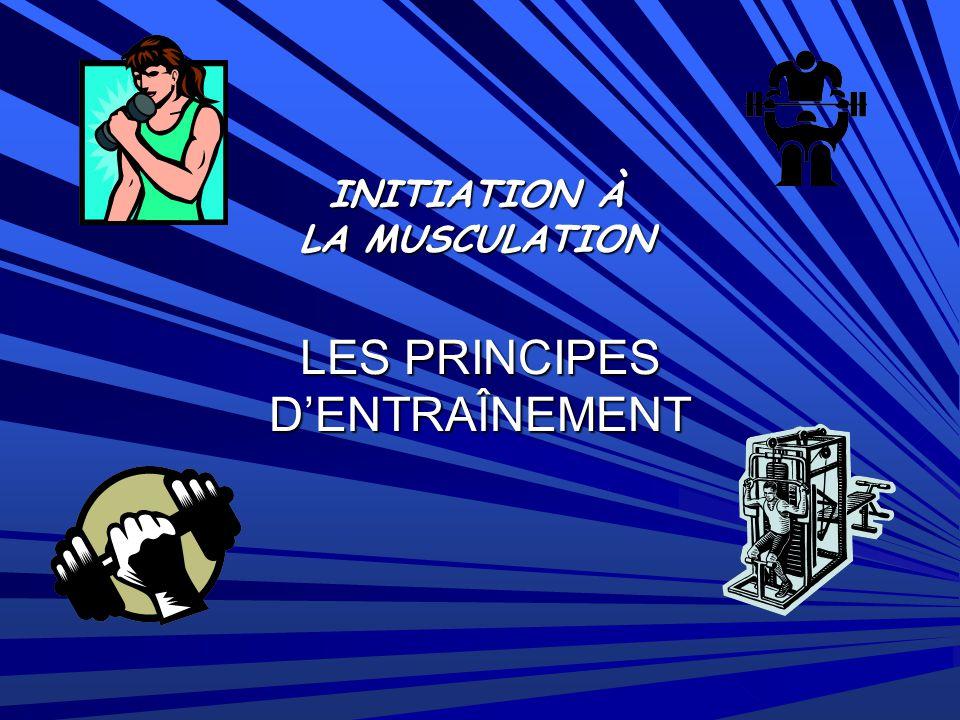 INITIATION À LA MUSCULATION