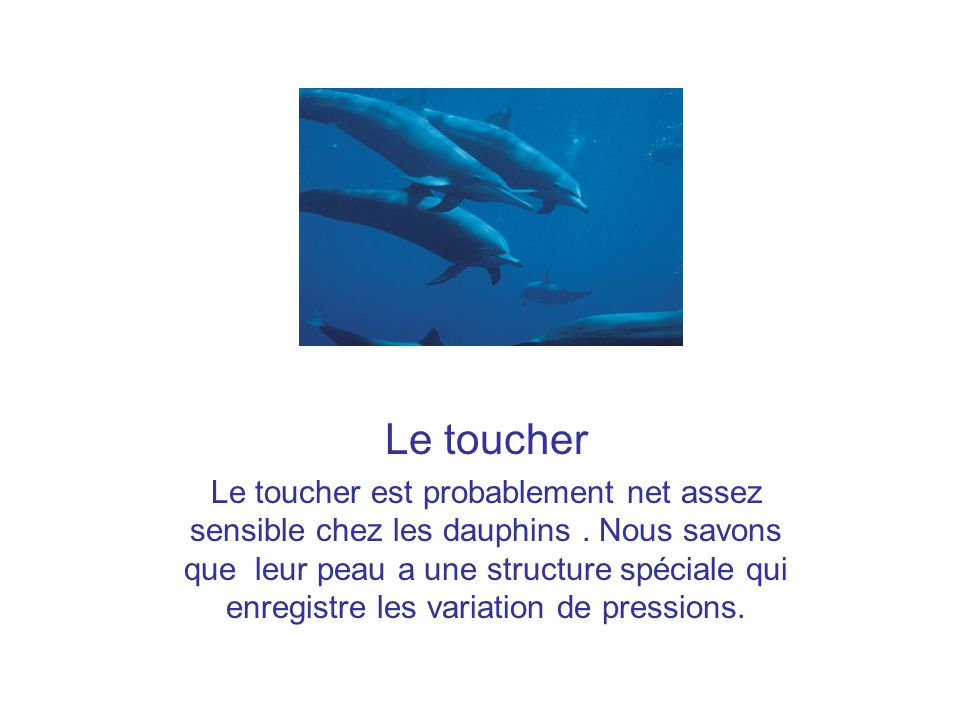 Le toucher