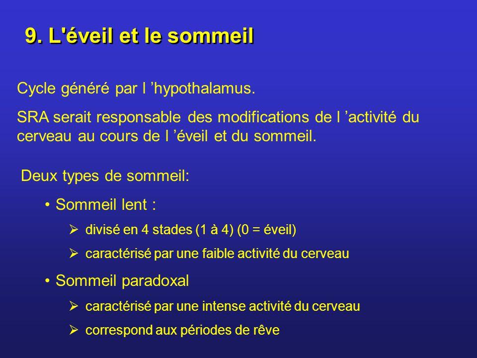 9. L éveil et le sommeil Cycle généré par l 'hypothalamus.