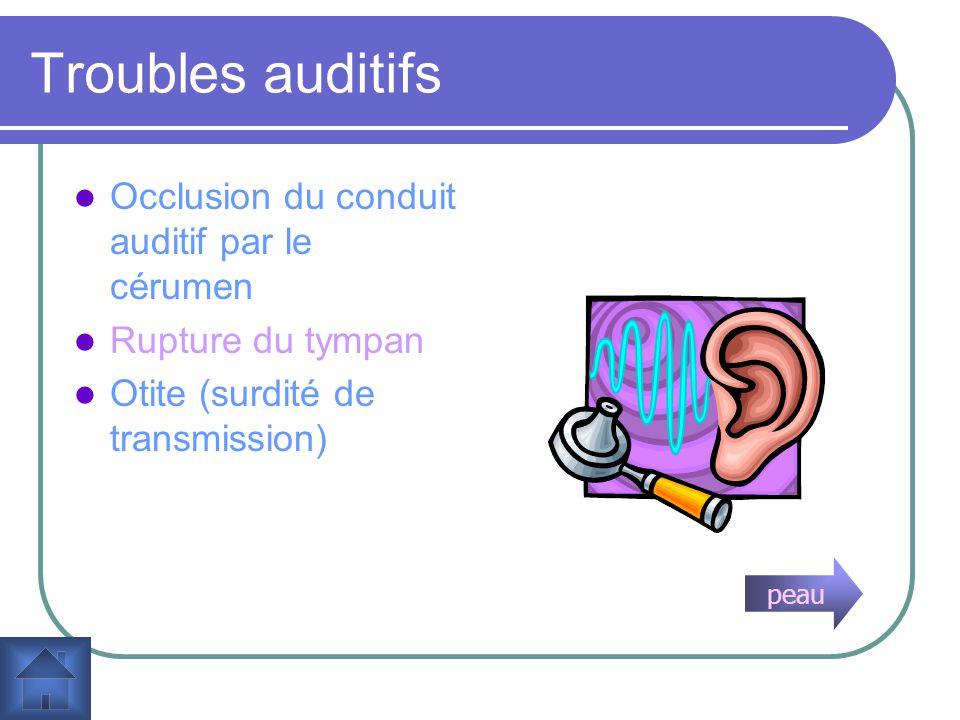 Troubles auditifs Occlusion du conduit auditif par le cérumen