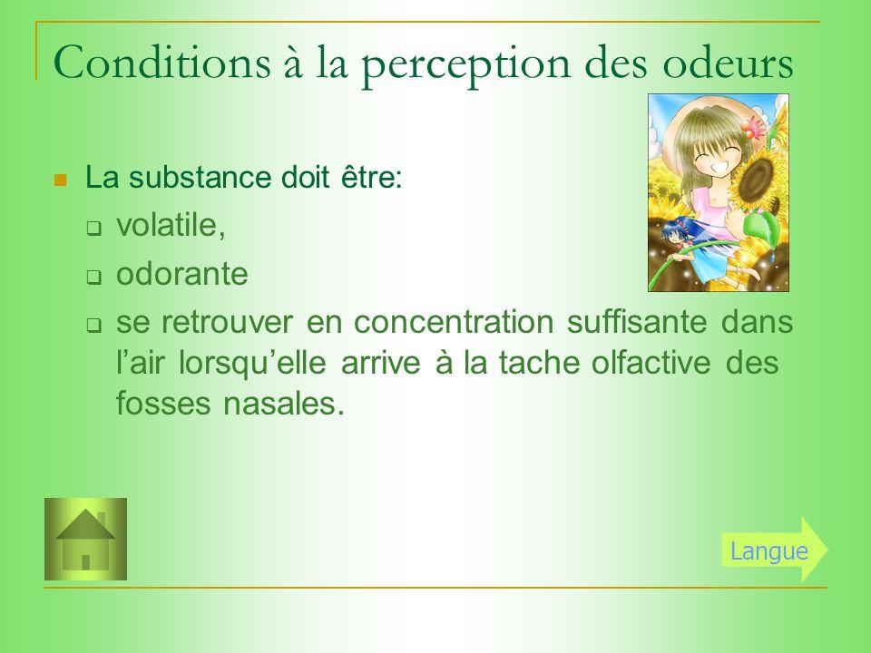 Conditions à la perception des odeurs