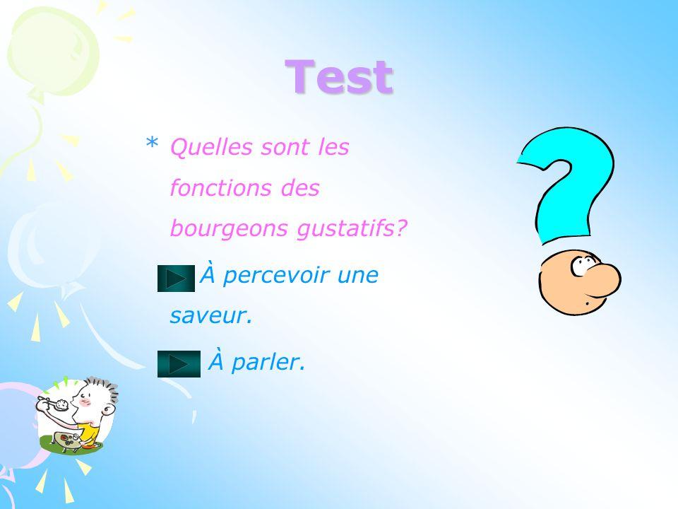Test Quelles sont les fonctions des bourgeons gustatifs