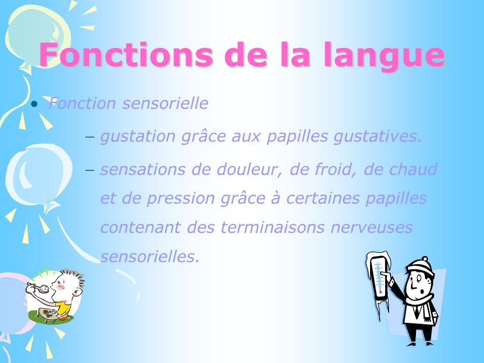 Fonctions de la langue Fonction sensorielle