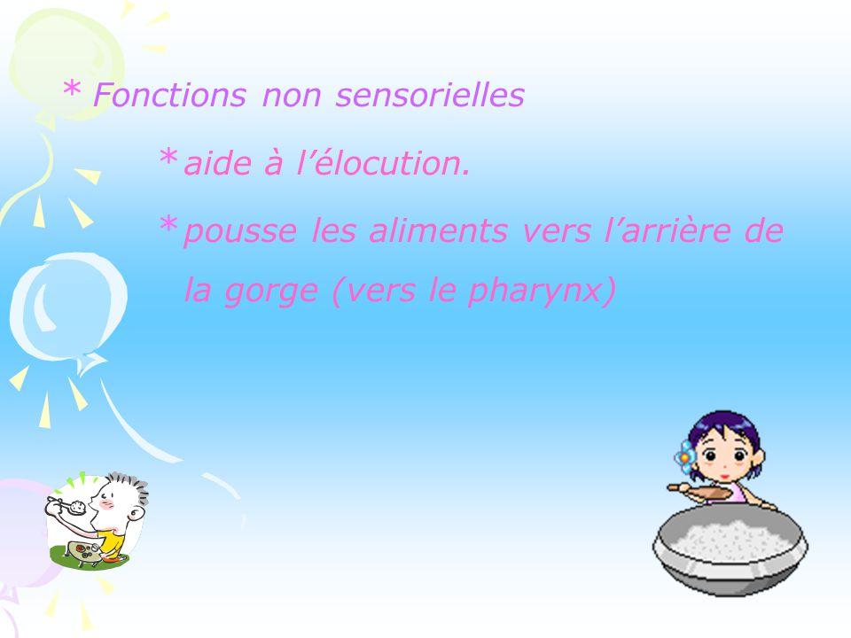 Fonctions non sensorielles