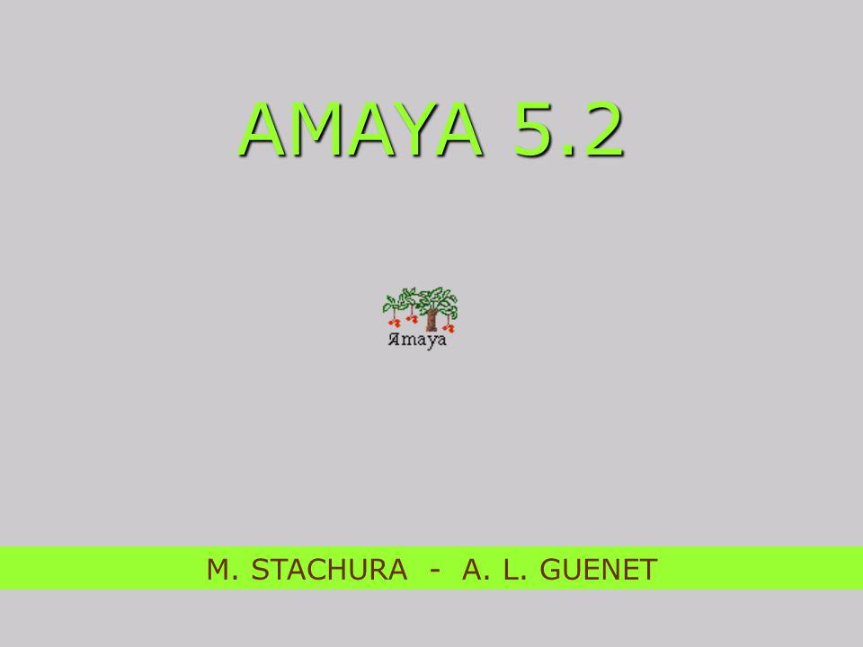 AMAYA 5.2 M. STACHURA - A. L. GUENET