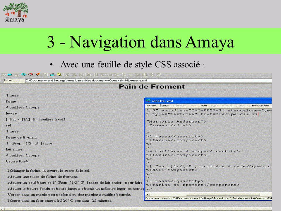 3 - Navigation dans Amaya