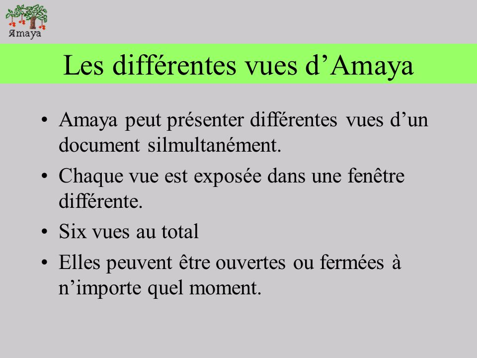 Les différentes vues d'Amaya