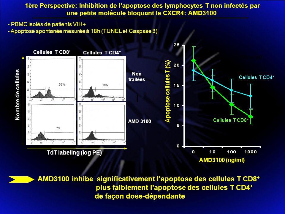 une petite molécule bloquant le CXCR4: AMD3100