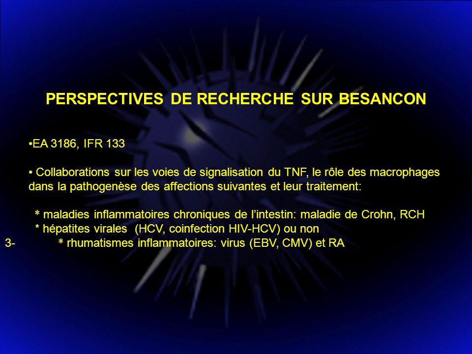 PERSPECTIVES DE RECHERCHE SUR BESANCON