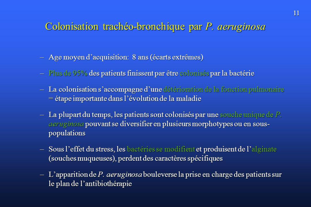 Colonisation trachéo-bronchique par P. aeruginosa