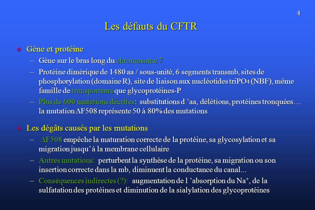 Les défauts du CFTR Gène et protéine