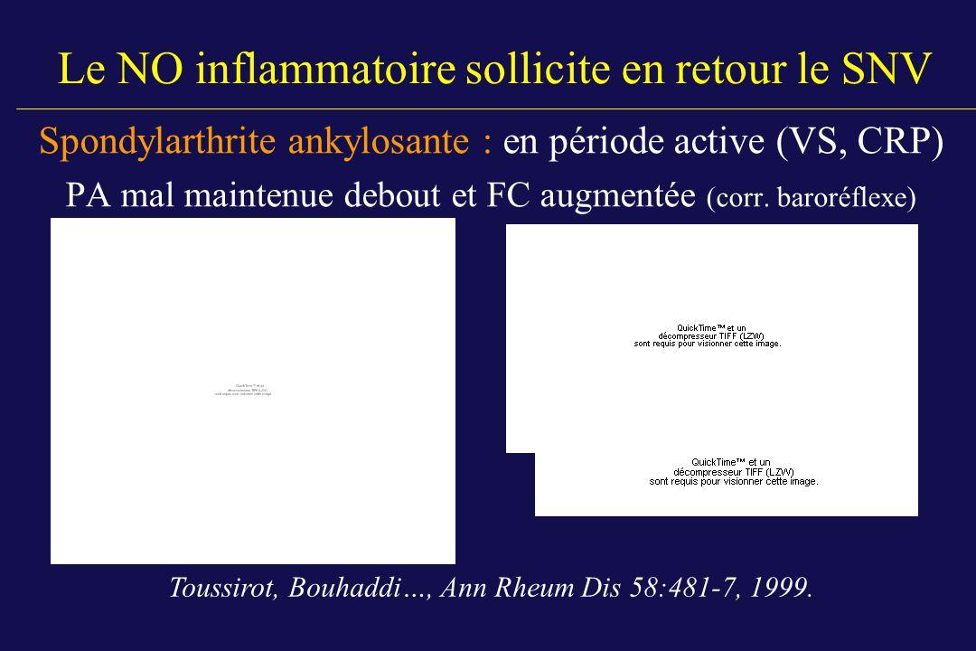 Le NO inflammatoire sollicite en retour le SNV