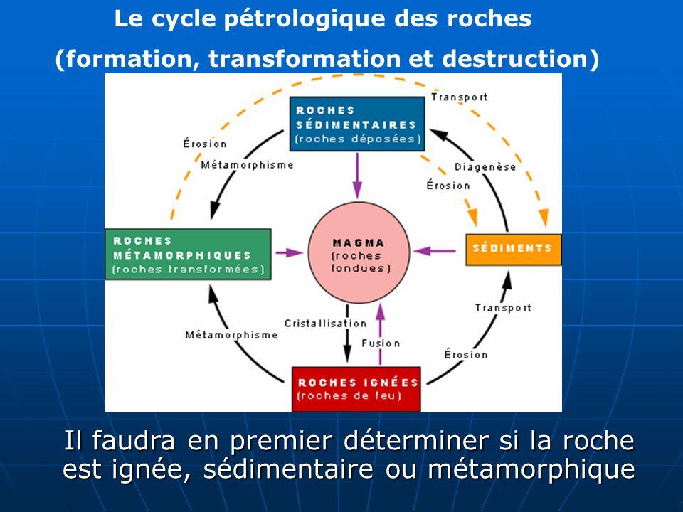 Le cycle pétrologique des roches